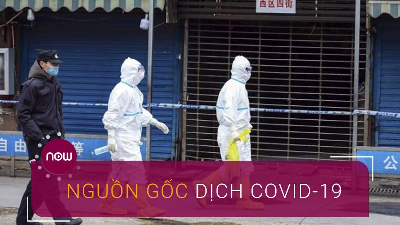 Dịch Covid-19 không bắt nguồn từ chợ hải sản Vũ Hán? | VTC Now