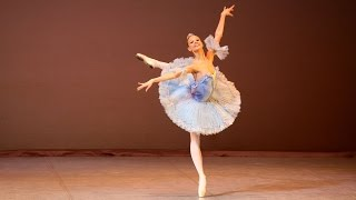 Arabesque 2008 | Anzhelina Vorontsova | Princess Florina. The Sleeping Beauty