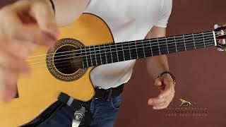 Baixar Easy Flamenco Speed Tricks - Guitar mastery lesson