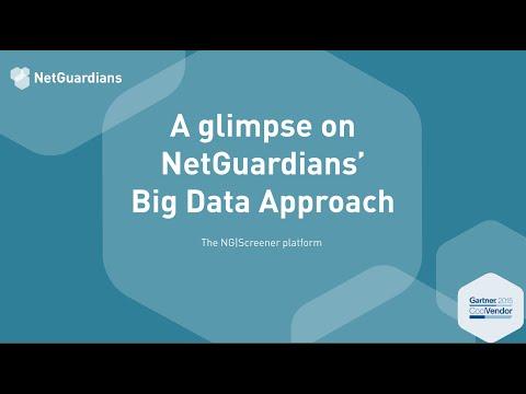 Webinar: Using Big Data Technology in Fraud Prevention