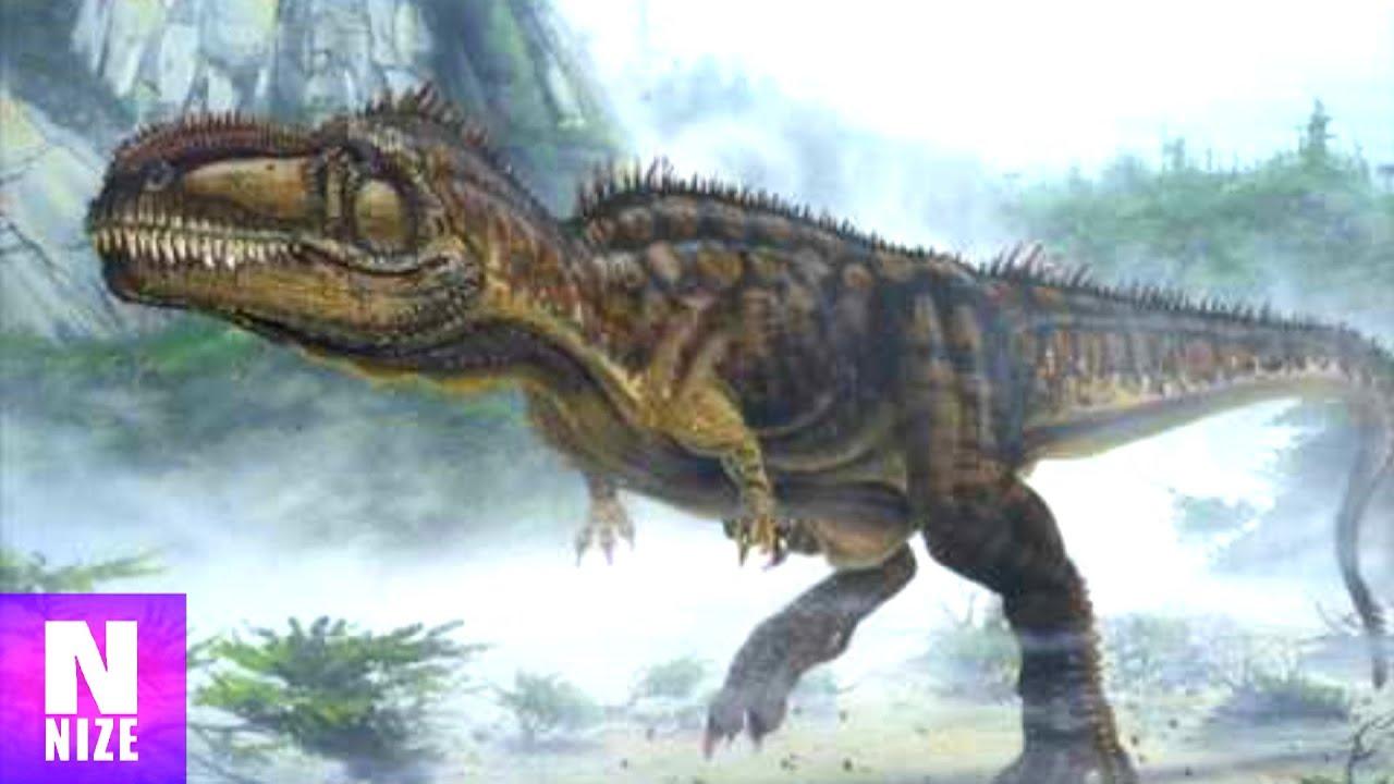 giganotosaurus der st rkste dinosaurier youtube. Black Bedroom Furniture Sets. Home Design Ideas