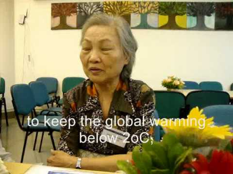 Nguyen Thi Dinh Vietnamese Citizen in World Wide Views on Global Warming