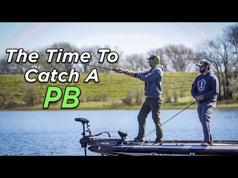 The GIANT Rewards Of Prespawn Bass Fishing