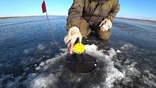 Зимняя рыбалка 2019 в Забайкальском крае Рыбалка на жерлицы