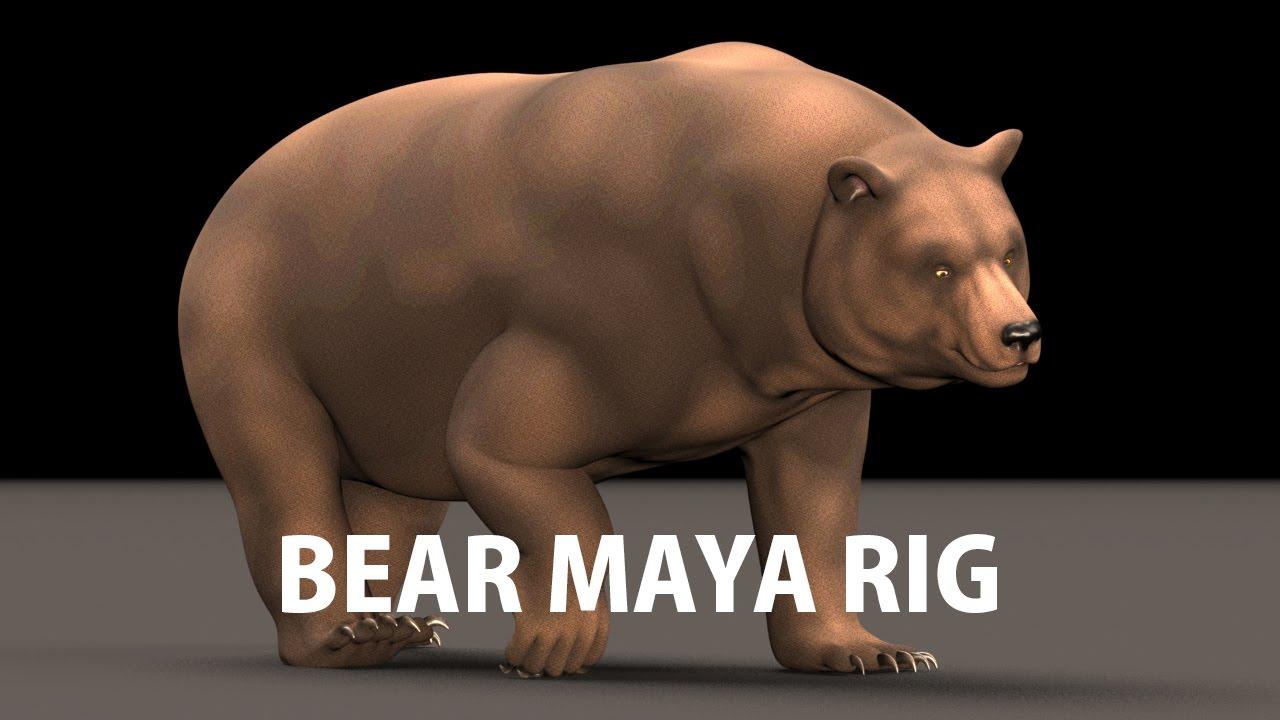 Bear Maya Rig – Truong CG Artist