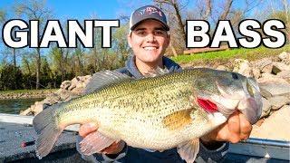 Fishing Crankbaits for GIANT Bass!!!