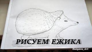 Ежик. Как нарисовать ежика легко. Рисунки карандашом #11(Группа в ВК: https://vk.com/kkazyava В группе вы можете предложить свою картинку или животное или портрет.Все что угодн..., 2016-09-18T14:43:17.000Z)