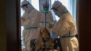 منظمة الصحة العالمية تحذر: معركة آسيا ضد كورونا لم تنته بعد…