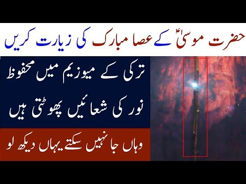 Hazrat Musa AS Kay Mojzat | Science Proved Miracle Of Hazrat Moosa AS | Infomatic