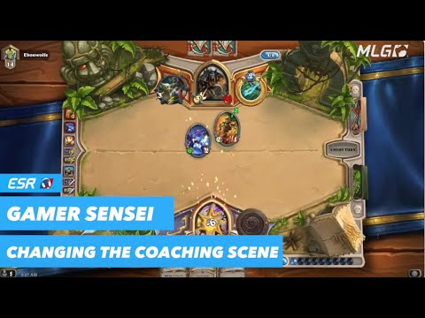 Startup Company Offering to Match Gamers with Coaches