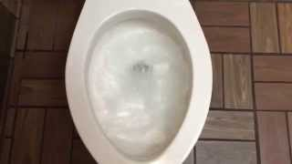 125. A 3.5 Gpf Madera Toilet And A Crane Embassy Urinal.