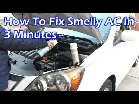 how-to-fix-smelly-ac-in-your-car-like-the-pro-in-3-minutes