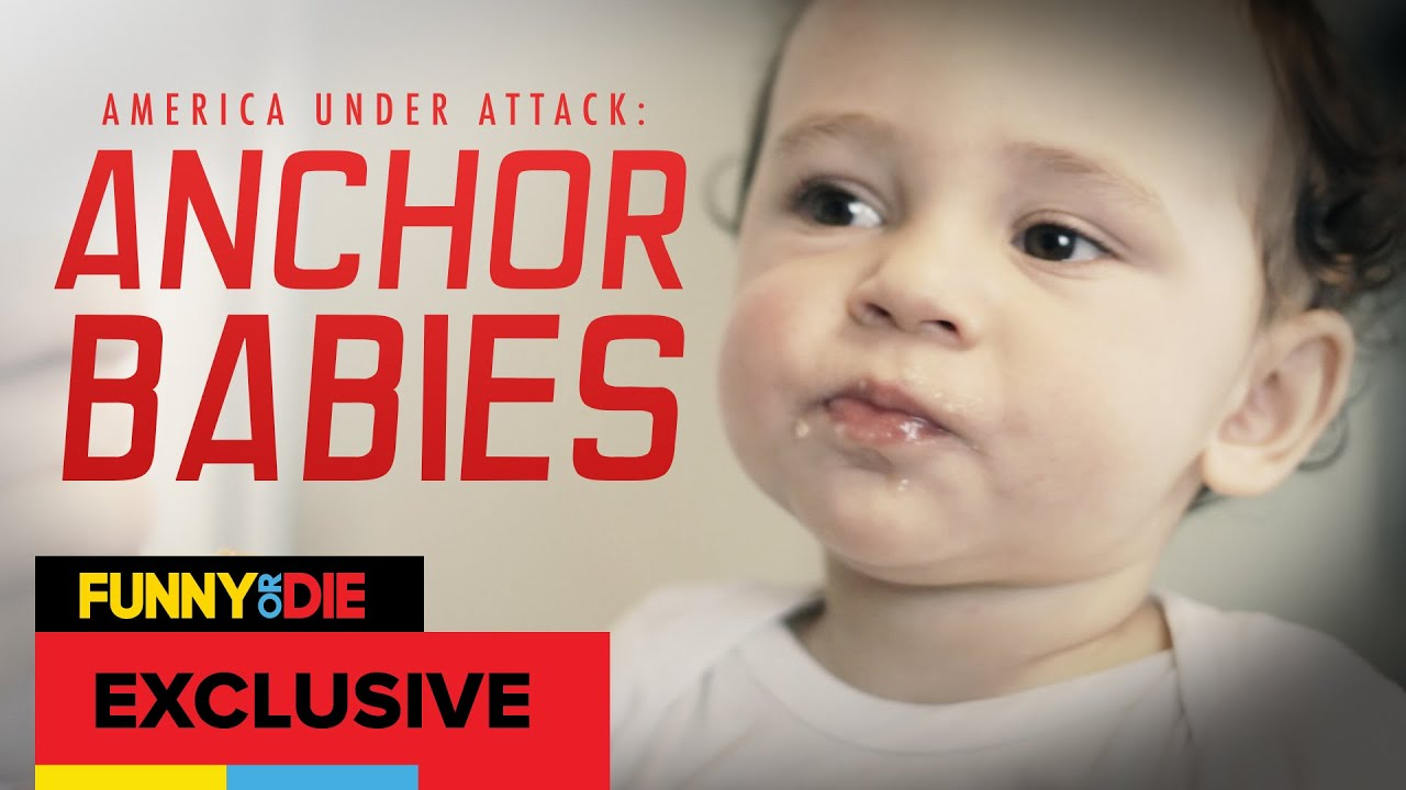 Image result for 'anchor babies',