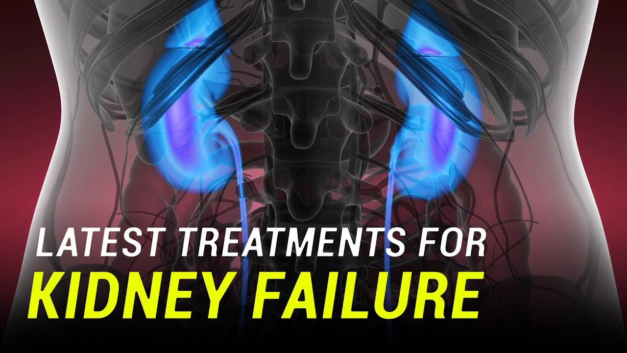 Gene Therapy And Stem Cells Could Treat Kidney Failure Youtube