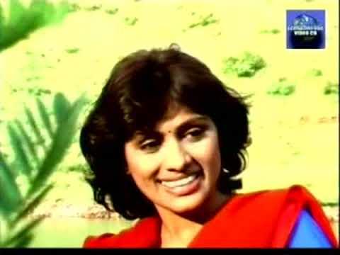 Khandesh Me Tarzan Ki Baraat | Malegaon New Movie | Khandesh New Movie