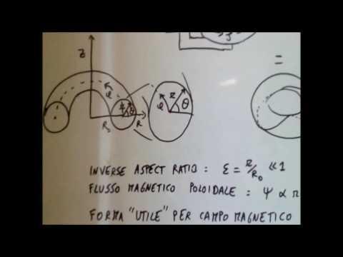 Fusione nucleare a confinamento magnetico - Tokamak