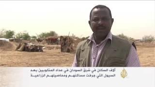 تداعيات السيول والفيضانات على أهالي شرق السودان
