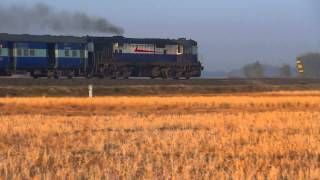 IRFCA - New Guwahati WDG3A - Train to Arunachal Pradesh Dekargaon-Naharlagun Passenger thumbnail