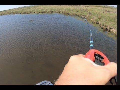 Sight Fishing Redfish In The Louisiana Marsh