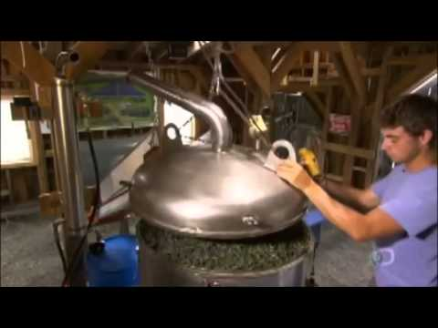 How It's Made - Lavender Essential Oil