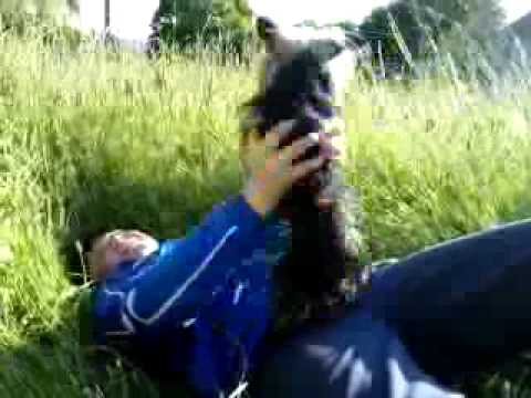 Hombres follando perras