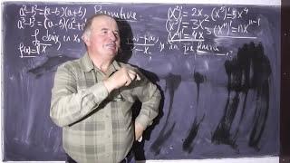 1/2 Lectia 262 - Primitive - Functii - Limite - Derivate - Tema la matematica cu Alin - Clasa 12