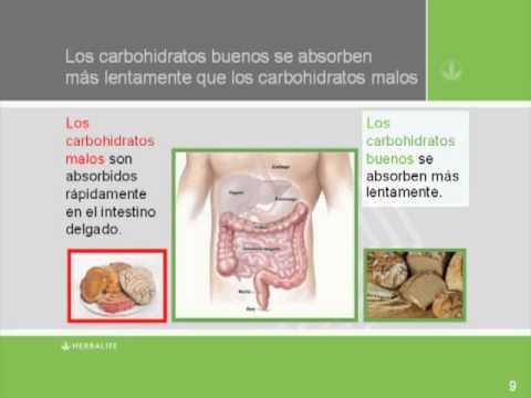 Carbohidratos buenos o malos