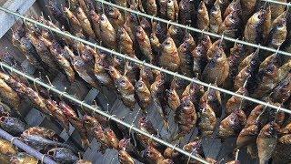 Коптильня Холодного Копчения Как За Коптить Рыбу(Карась Плотва Чебак)