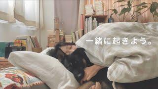【一緒に起きよう】保護犬と女子のいつもの朝