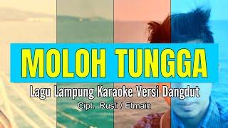 Download lagu Muloh Tungga Karaoke No Vocal Lagu Lung Artis Ely Marta Cipt Rusli Etmain MP3
