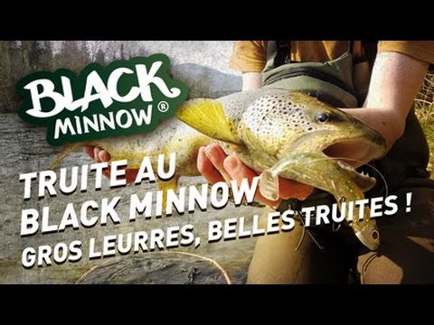 leurre minnow truite