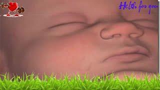 38 semanas na virilha gravidez facada de