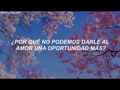 Shawn Mendes - Under Pressure feat. Teddy Geiger (Traducida al español) [Cover]