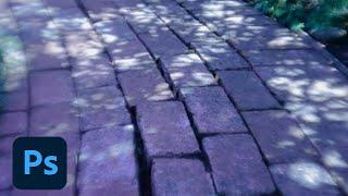 Dng Profile Editor Mac Download