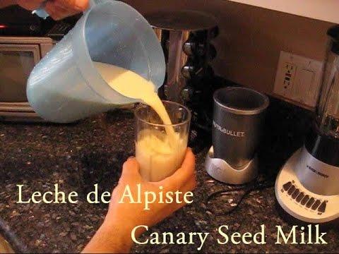 Como hacer la Leche de Alpiste -  How to make Canary Seed Milk