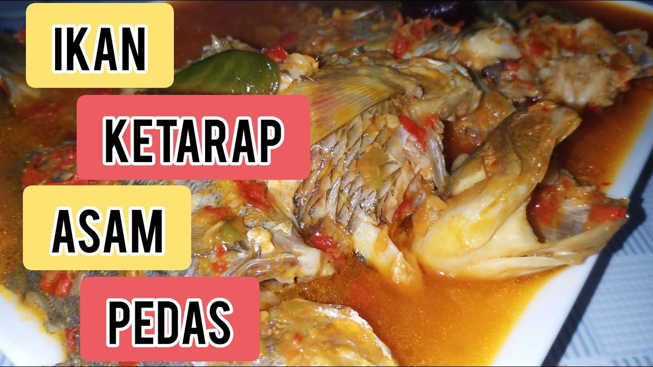 balado lele asam pedas presiden jokowi sukai gulai asam pedas baung  ikan masukkan Resepi Masak Asam Pedas Ikan Baung Enak dan Mudah