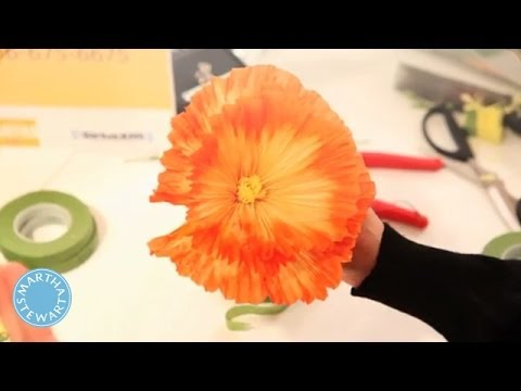 How to make paper flowers with livia cetti martha stewart youtube how to make paper flowers with livia cetti martha stewart mightylinksfo