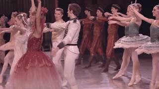 Meet Louisville Ballet