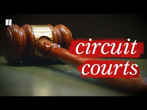 What's So Important About Circuit Courts?