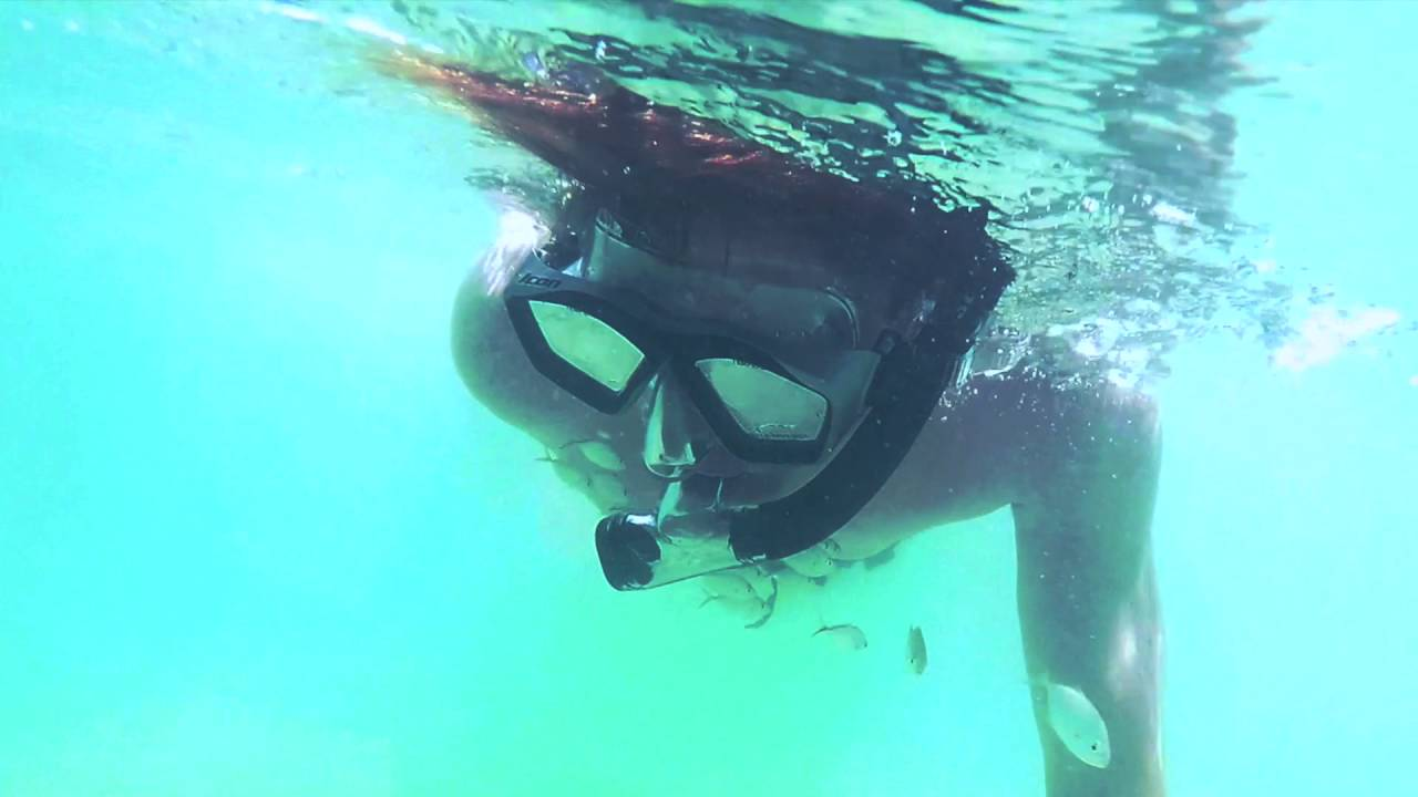 Snorkeling In South Beach Miami Fl