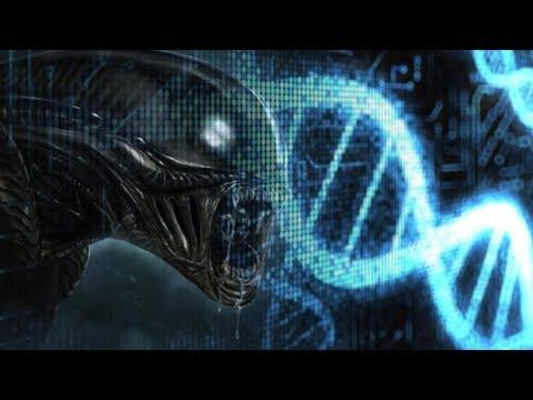 5 different types of Alien Species