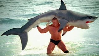 Download Brock Lesnar F5s a shark: SummerSlam 2003 commercial