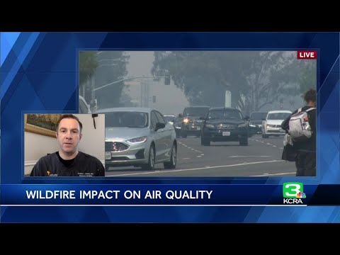 How bad air quality impacts health: Doctor explains