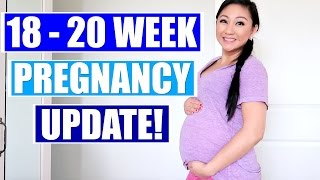 Video 18 - 20 WEEK PREGNANCY UPDATE: GENDER REVEAL, PREGNANCY BACK PAIN download MP3, 3GP, MP4, WEBM, AVI, FLV November 2017