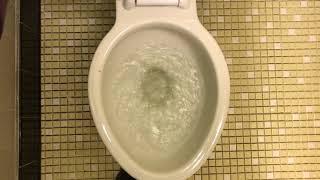 1,139. 1940's Kohler Bolton Toilet!!!!!