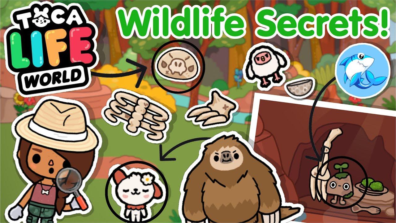 Toca Life world   Wildlife Secrets!?