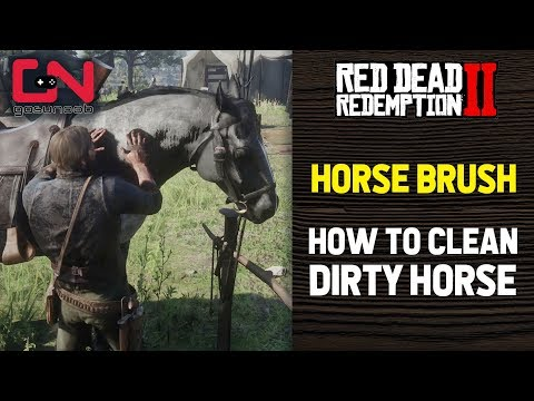 Red Dead Redemption 2 - Horse Brush - Clean Horse