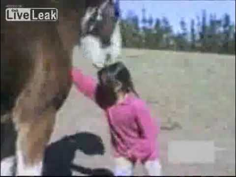 Sexy girl with a horse from YouTube · Duration:  1 minutes 14 seconds