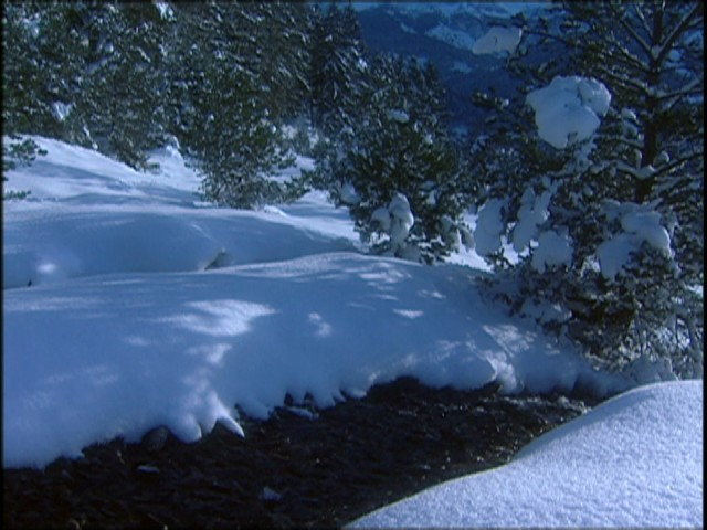 andre-rieu-im-dreaming-of-a-white-christmas-andre-rieu