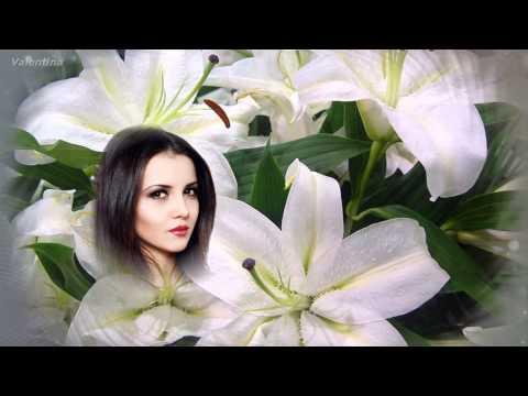 белые цветы шапиро видео